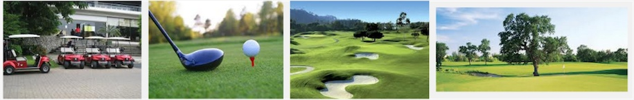 Golf Courses and Clubs